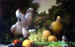 С попугаями