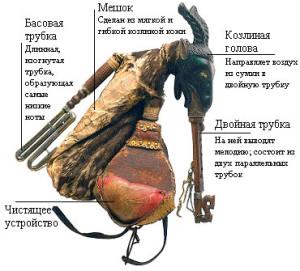 дуда -коза